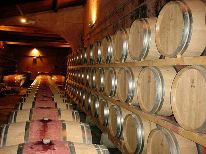 Fotografia di cantina vinicola con botti