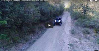Video di un quod nei boschi della Toscana